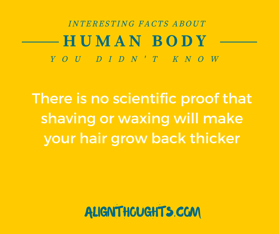AlignThoughts-Interesting-Facts-About-Human-Body (1)