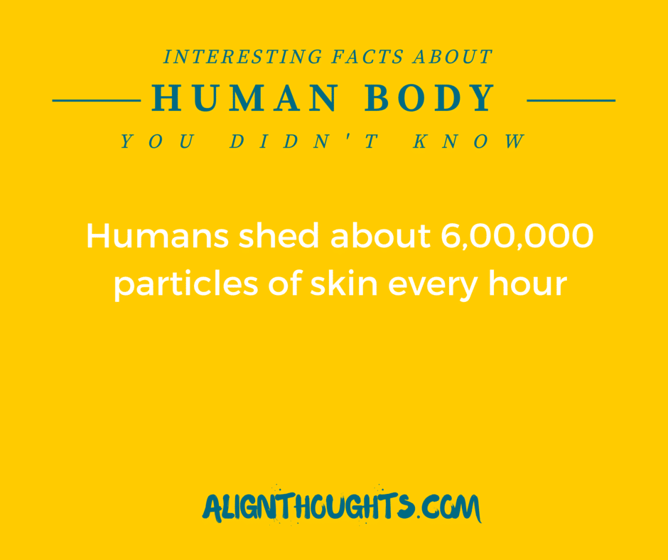 AlignThoughts-Interesting-Facts-About-Human-Body (10)