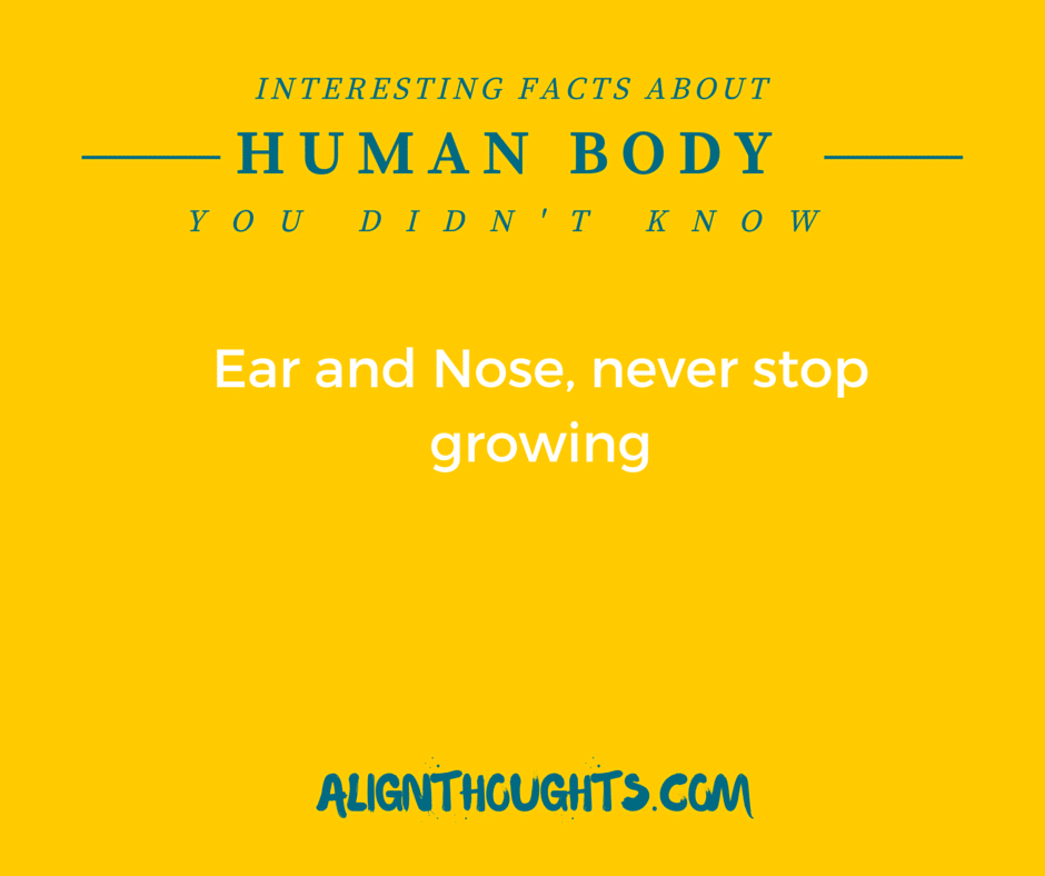 AlignThoughts-Interesting-Facts-About-Human-Body (13)