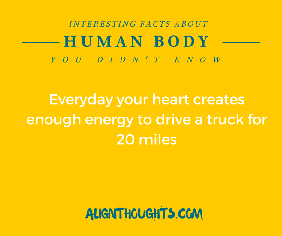 AlignThoughts-Interesting-Facts-About-Human-Body (15)