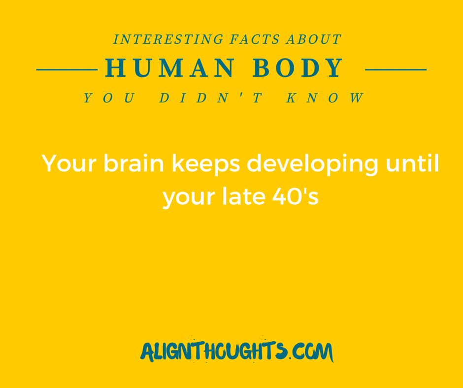 AlignThoughts-Interesting-Facts-About-Human-Body (17)