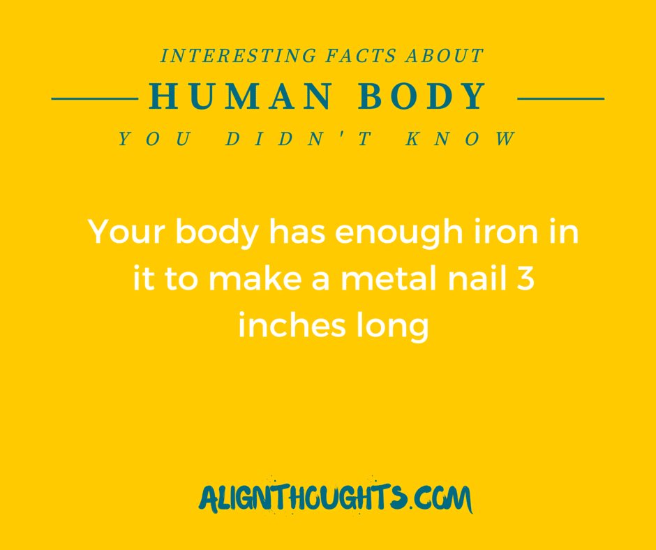 AlignThoughts-Interesting-Facts-About-Human-Body (8)