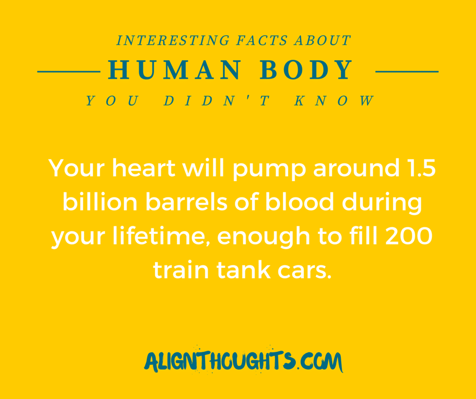 AlignThoughts-Interesting-Facts-About-Human-Body