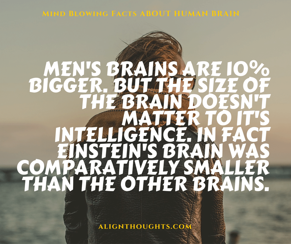 AlignThoughts-Interesting-Facts-About-Human-Brain (17)
