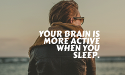 18 Incredible Facts About Human Brain