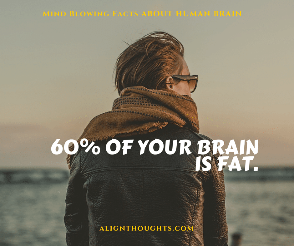 AlignThoughts-Interesting-Facts-About-Human-Brain (6)