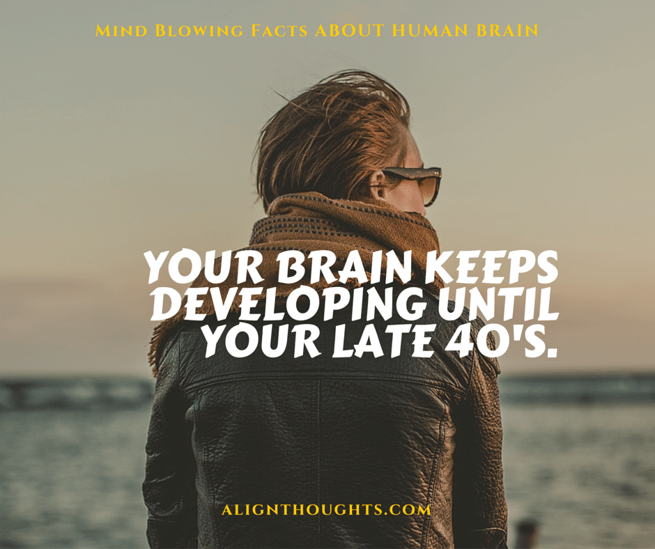 AlignThoughts-Interesting-Facts-About-Human-Brain