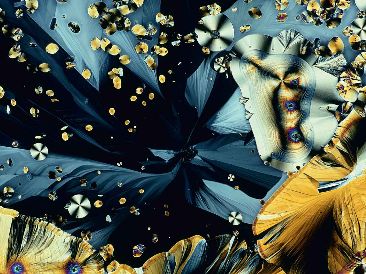 15-alignthoughts-melatonin-crystals-micropscope