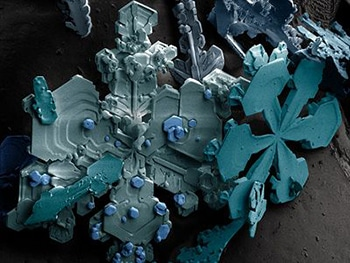 7-alignthoughts-snow-under-micropscope