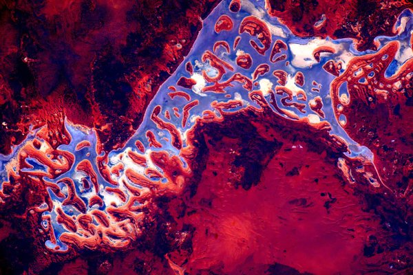 align thoughts-outer-space-scottkelly-autralia-earth-art