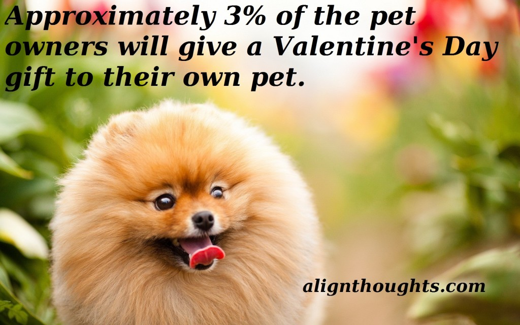 alignhtoughts-cute-dogs-facts-on-feb14th