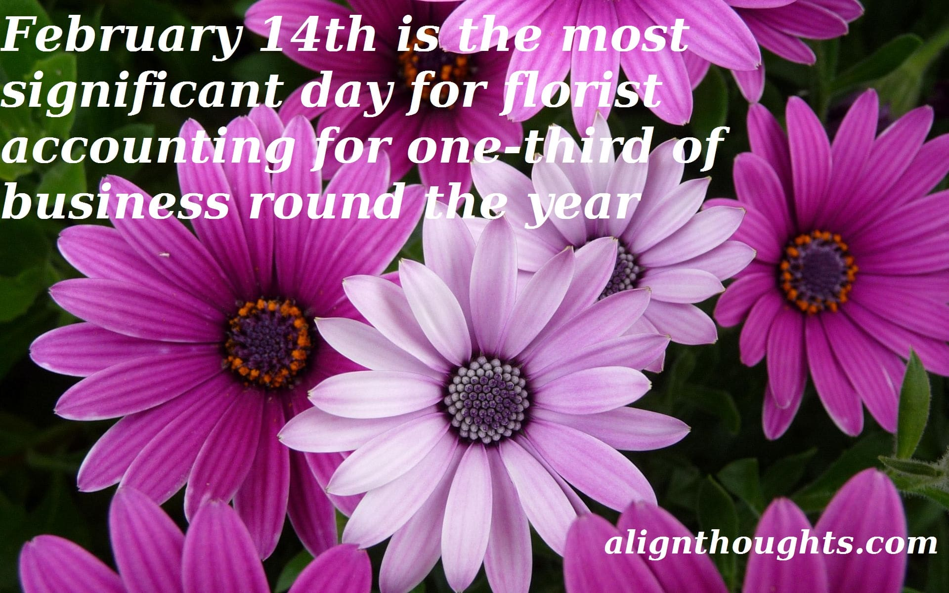 alignthoughts-feb14-florists-images-of-flowers-and-butterflies