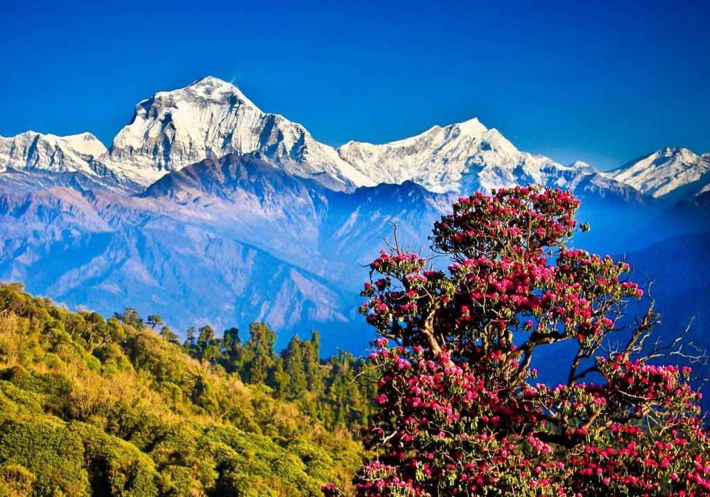 alignthoughts.com-amazingly-cheap-placesto-travel-nepal