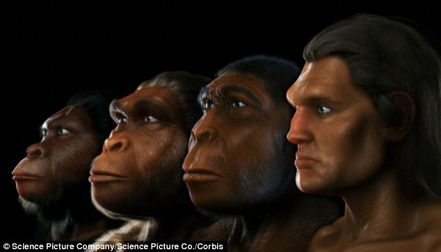 alignthoughts-the-history-of-huma-evolution-from-Neanderthals-to-homo-sapiens11
