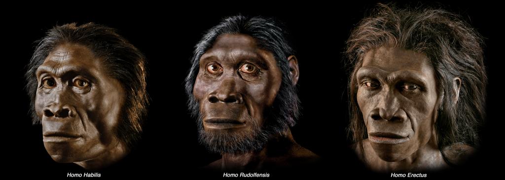 alignthoughts-three_busts_L_horizontal-bucci-2-human-evolution