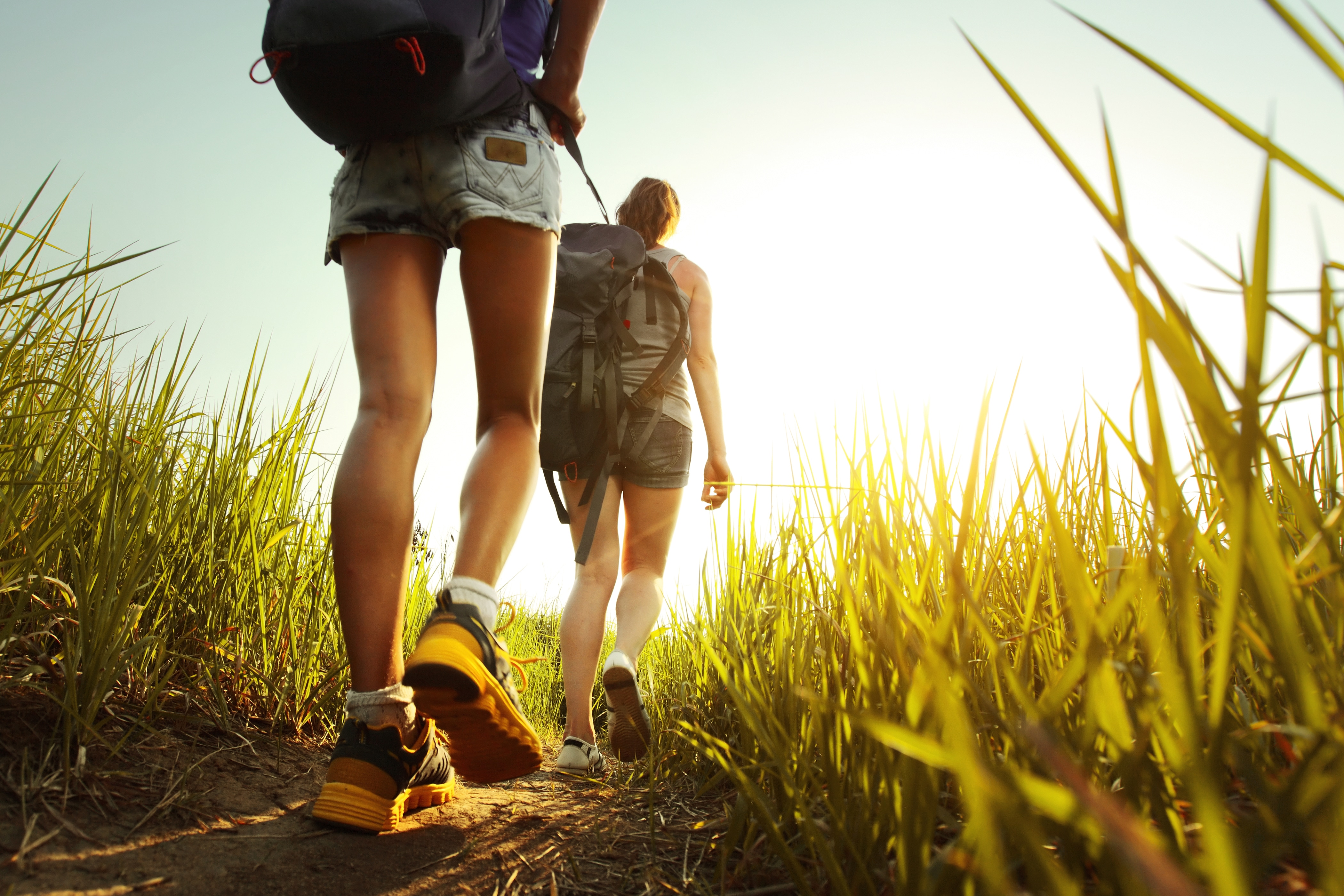alignthoughts-Hikers with backpacks walking through a meadow with lush grass