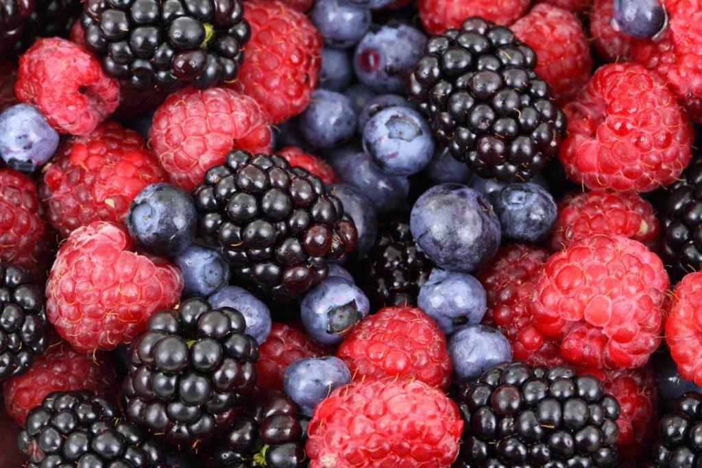 align-thougths-background-berries-berry-blackberries-87818