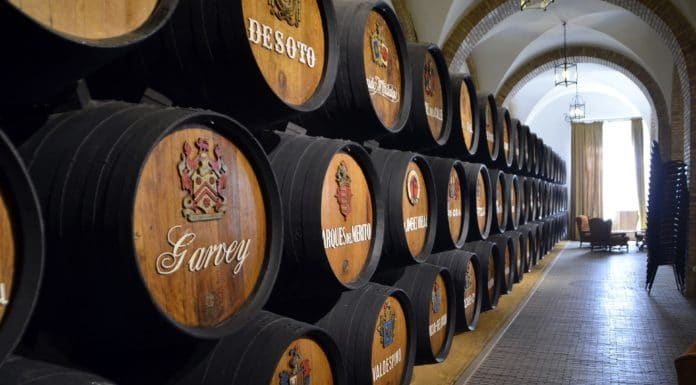 10-best-vineyards-and-breweries- alignthoughts