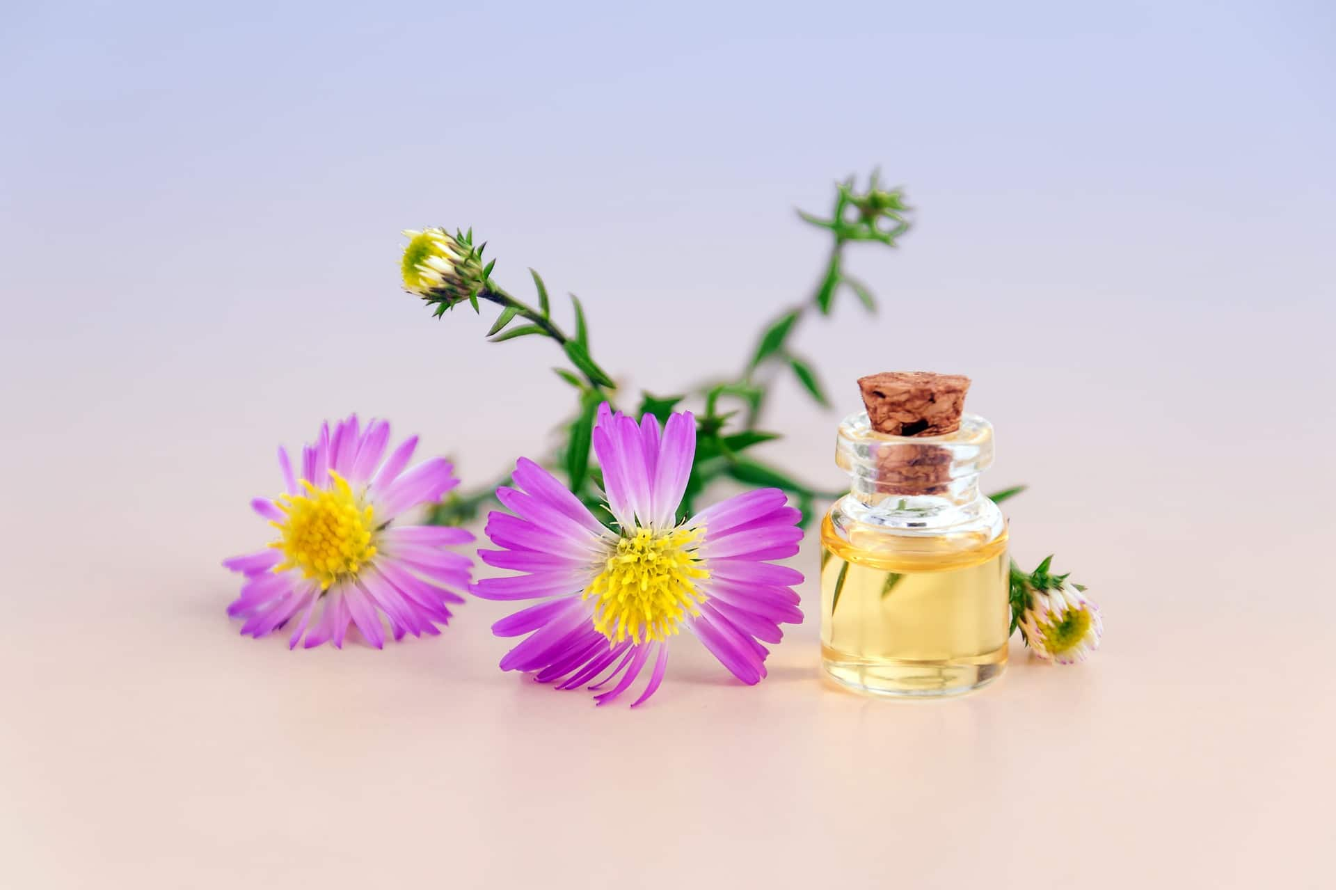 benefits-of-essential-oils-alignthoughts