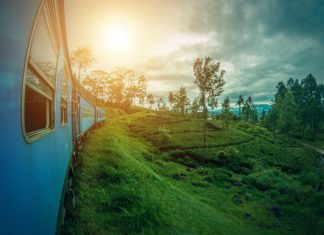 travel-destinations-to-visit-in-2019-srilanka-alignthoughts