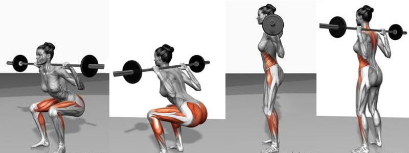 How-To-Lose-Thigh-Fat-Squat-Workout-Muscles-AlignThoughts