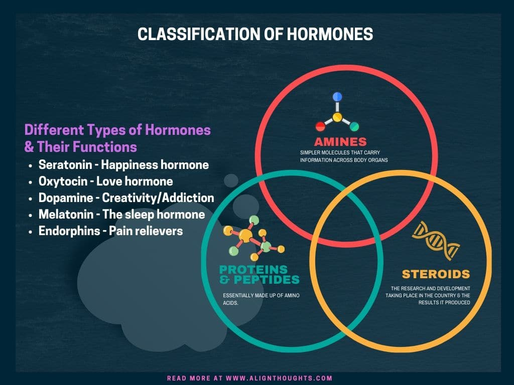different types of hormones and their functions-alignthoughts.jpg